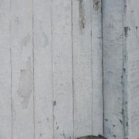 Mondrian's Door